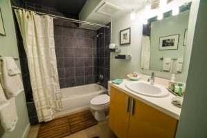 Ice House Loft 122 Guest Bath